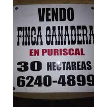 Puriscal Vendo Finca En Santa Rosa