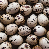 Huevos De Codorniz 1200